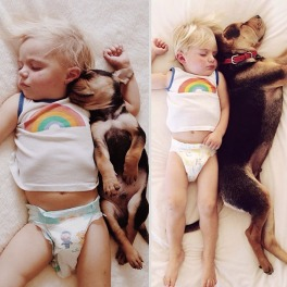 toddler-naps-with-puppy-theo-and-beau-2-1